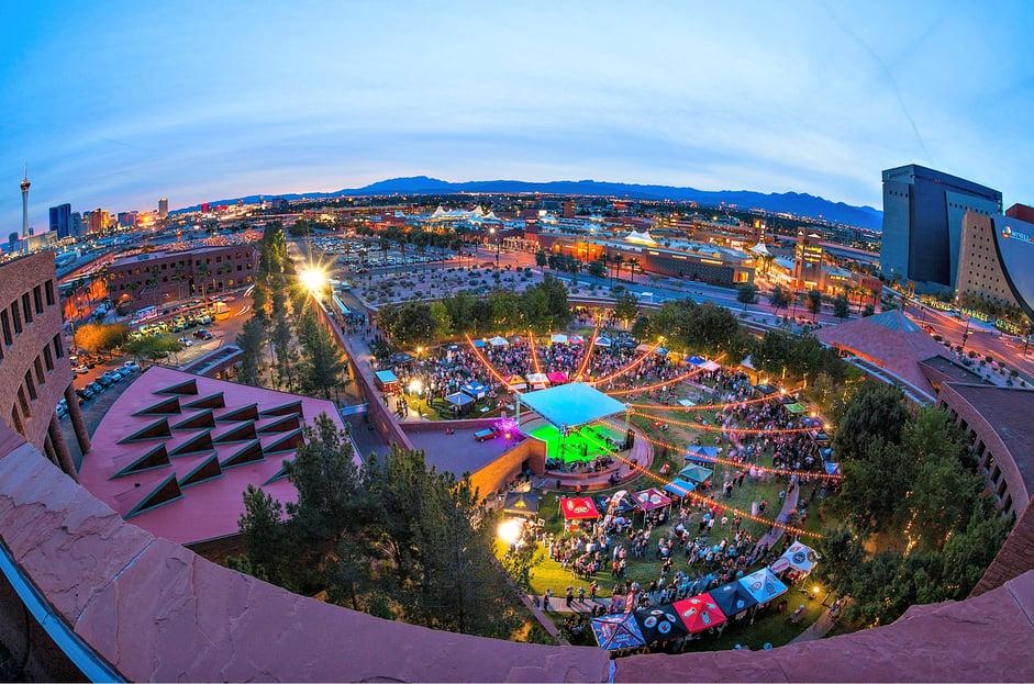 Downtown Brew Festival_Credit Fred   Morledge.jpg