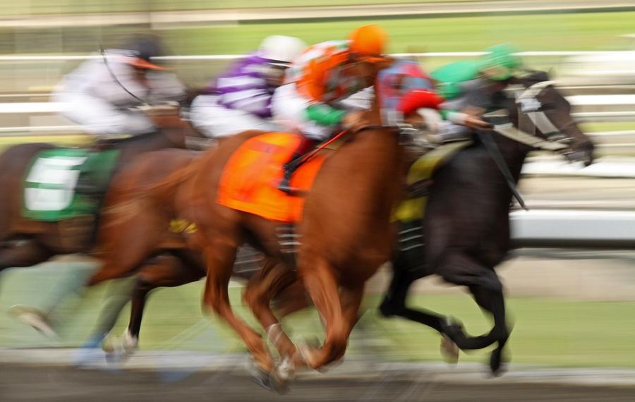 bigstock-Field-Of-Racing-Thoroughbred-H-6039531.jpg