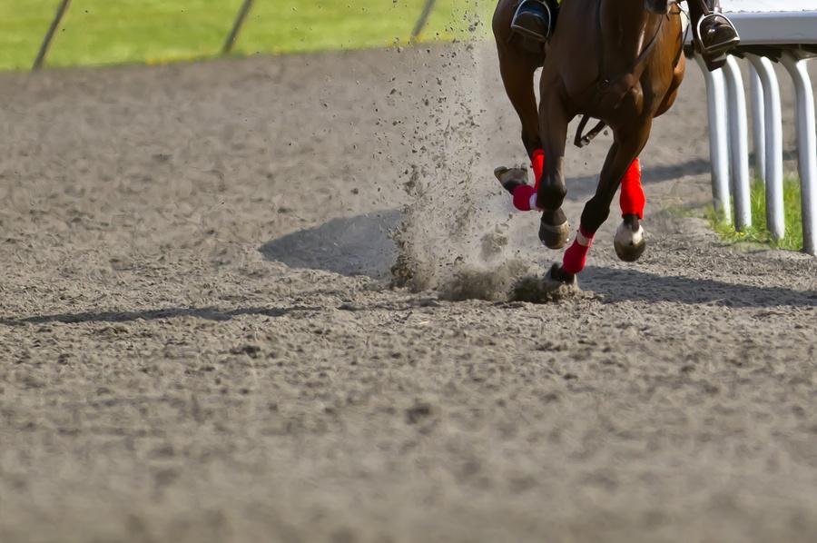 bigstock-Horse-Racing-7920485.jpg