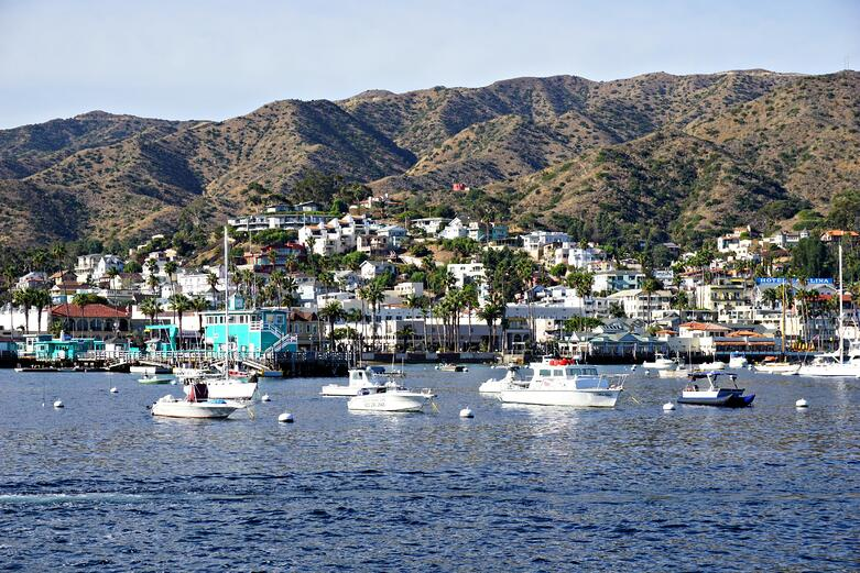 Catalina Island 2.jpg